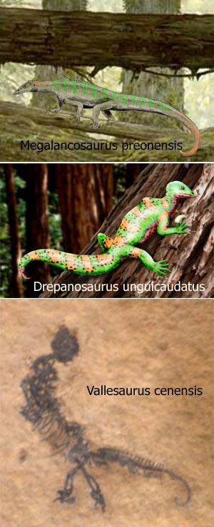 Simiosaurio - Zoo de Fósiles - cienciaes.com