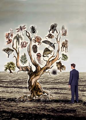 Millonarios y evolución - Cierta Ciencia podcast - CienciaEs.com