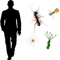 Distancia II - Ciencia Extrema podcast - CienciaEs.com
