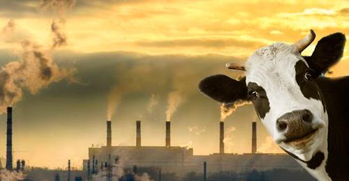 Carne y cambio climático - Ciencia Fresca - CienciaEs.com