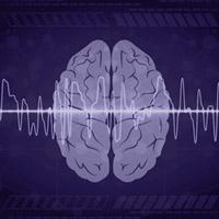 Riqueza y diversidad cerebral - Quilo de Ciencia Podcast - CienciaEs.com