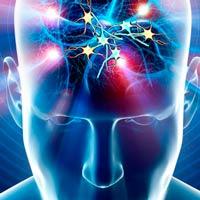 Rupturas en las conexiones del cerebro - Cierta ciencia - Cienciaes.com