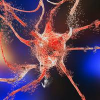 Progresión del cáncer - Quilo de Cienci podcast - CienciaEs.com