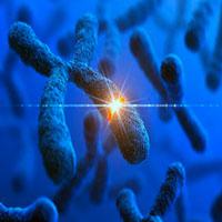 Enfermedades genéticas - Quilo de Ciencia podcast -CienciaEs.com