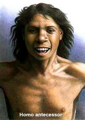 Homininos de Atapuerca - Hablando con Científicos podcast - CienciaEs.com