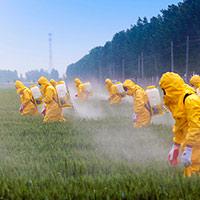 Pesticidas de ARN - Quilo de ciencia Podcast - CienciaEs.com