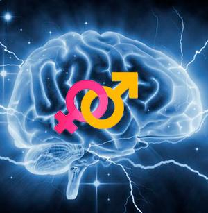 El cerebro no binario - Cierta Ciencia podcast - CienciaEs.com