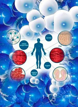 Células madre - Cierta Ciencia podcast - CienciaEs.com