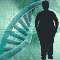 Calor, epigenetica y obesidad - Quilo de Ciencia podcast - CienciaEs.com