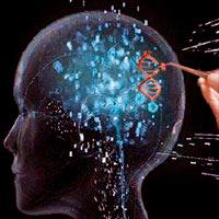 modificar genéticamente la inteligencia - Cierta Ciencia podcast - CienciaEs.com