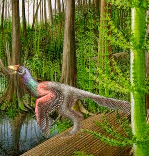 Caihong juji - Zoo de Fósiles podcast - CienciaEs.com