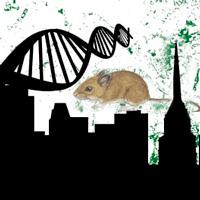 Adáptese quien pueda - Quilo de Ciencia podcast - CienciaEs.com