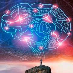 Viaje al centro del cerebro - Cierta Ciencia podcast - CienciaEs.com