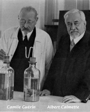 Vacuna BCG - Quilo de Ciencia podcast - CienciaEs.com