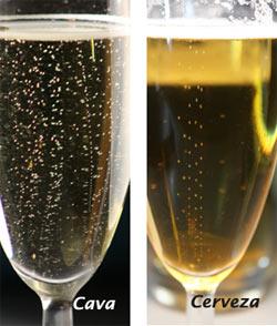 Burbujas en champán