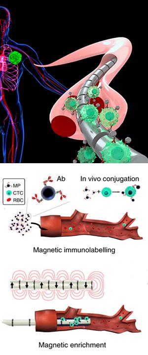 Cable magnético y cáncer -Cierta ciencia -  CienciaEs.com