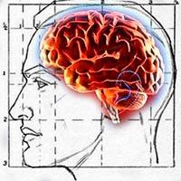 tamaño o eficiencia - Cierta Ciencia Podcast - CienciaEs.com