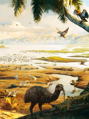 La fauna de Saint Bathans - Zoo de fósiles - CienciaEs.com