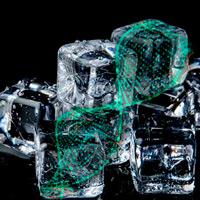 El gen del frío - Quilo de Ciencia podcast - CienciaEs.com