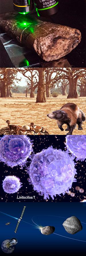 Información fosilizada. Mamíferos entre dinosaurios - Ciencia Fresca podcast - CienciaEs.com