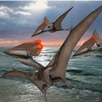 Thalassodromeus - Zoo de Fósiles podcast - CienciaEs.com