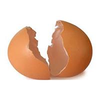 biomateriales con cáscaras de huevo - Cierta Ciencia podcast - CienciaEs.com