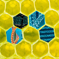 Biología sintética - Cierta Ciencia podcast - CienciaEs.com