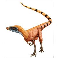 Sinosauropteryx. Podcst Zoo de Fósiles - CienciaEs.com