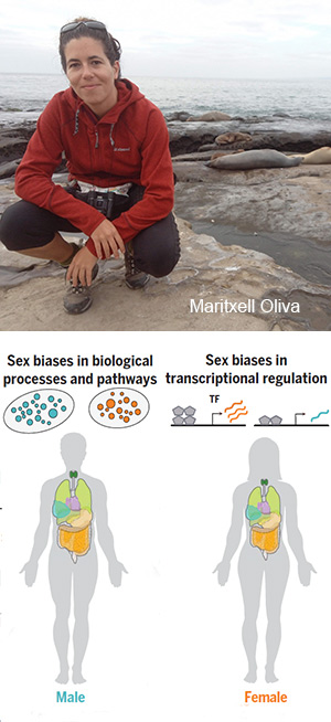 El sexo impacta en los genes - Hablando con científicos podcast - CienciaEs.com