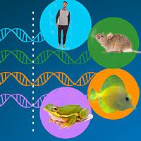 Genómica cósmica - Quilo de Ciencia podcast - CienciaEs.com