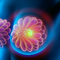 Medicina exacta - Quilo de Ciencia podcast  - CienciaEs.com