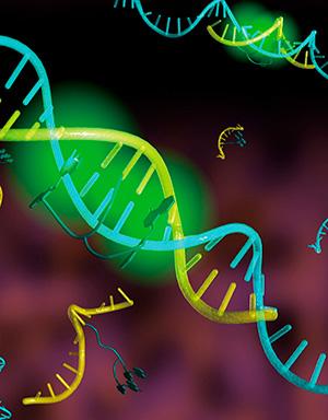 La compleja guerra contra el cáncer - Quilo de Ciencia podcast - CienciaEs.com