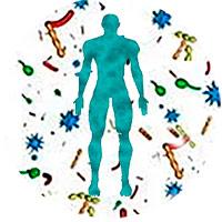 Sistema inmunitario 3 - Hablando con Científicos podcast - CienciaEs.com