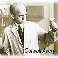 Descubrimiento del siglo - Quilo de Ciencia - CienciaEs.com