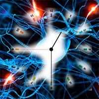 células del tiempo - Cierta Ciencia podcast - CienciaEs.com