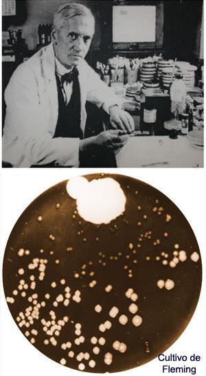 Fleming - Ciencia y Genios - cienciaes.com