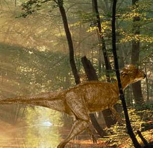 Paquicefalosaurio