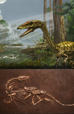 Zoo de Fósiles podcast - cienciaes.com
