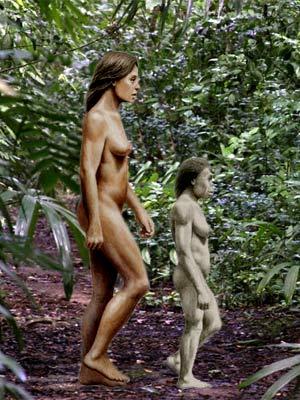 Homo Floresiensis - Zoo de fósiles podcast - cienciaes.com