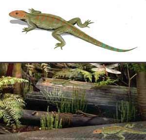 Hylonomus